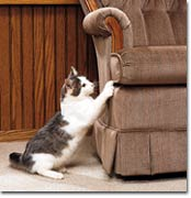 Cat scratching chair
